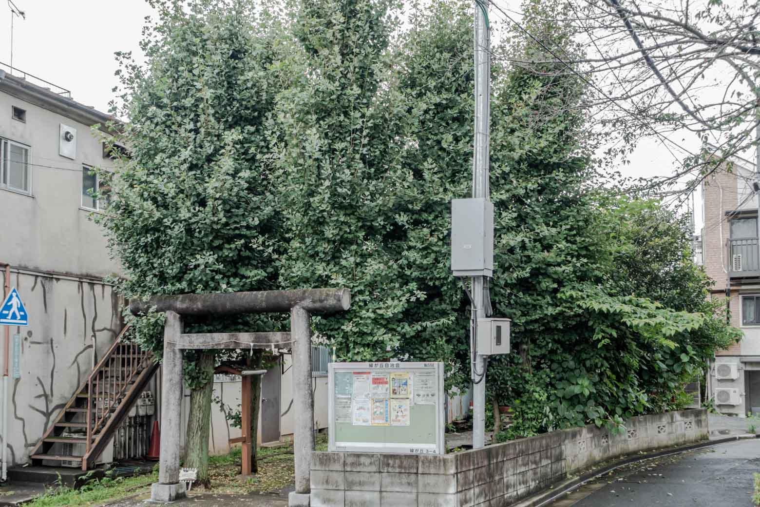 熊野神社に到着しました。詳しい謂れは調べても出てきませんでしたが、熊野本宮大社の分社なのでしょうか?