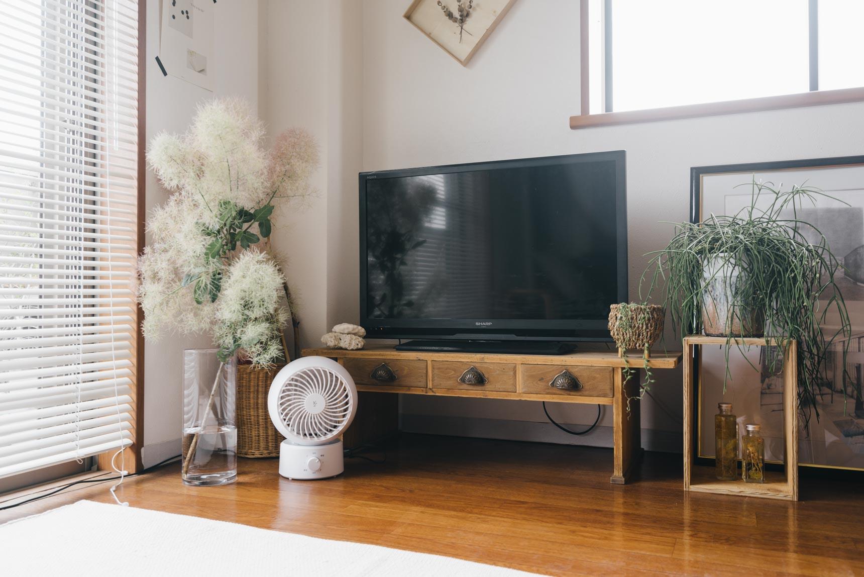 引き出しの取っ手が可愛いテレビボードは、CASIN(http://casin.jp/)のもの。「テレビ周りが無機質にならないように、植物を合わせています」