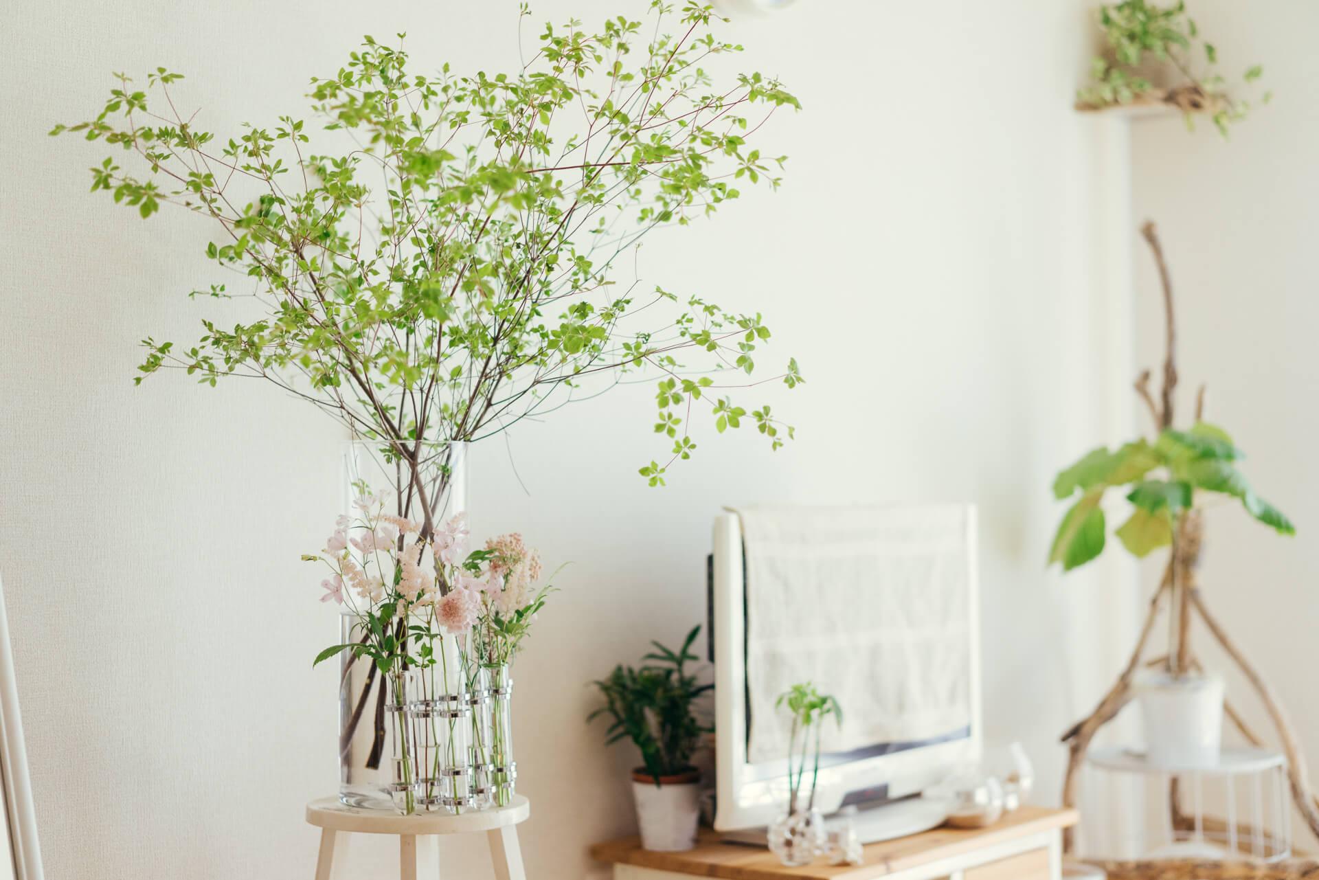 暑い時期でも保ちのよいドウダンツツジ。爽やかなガラスの花器と組み合わせたいですね。