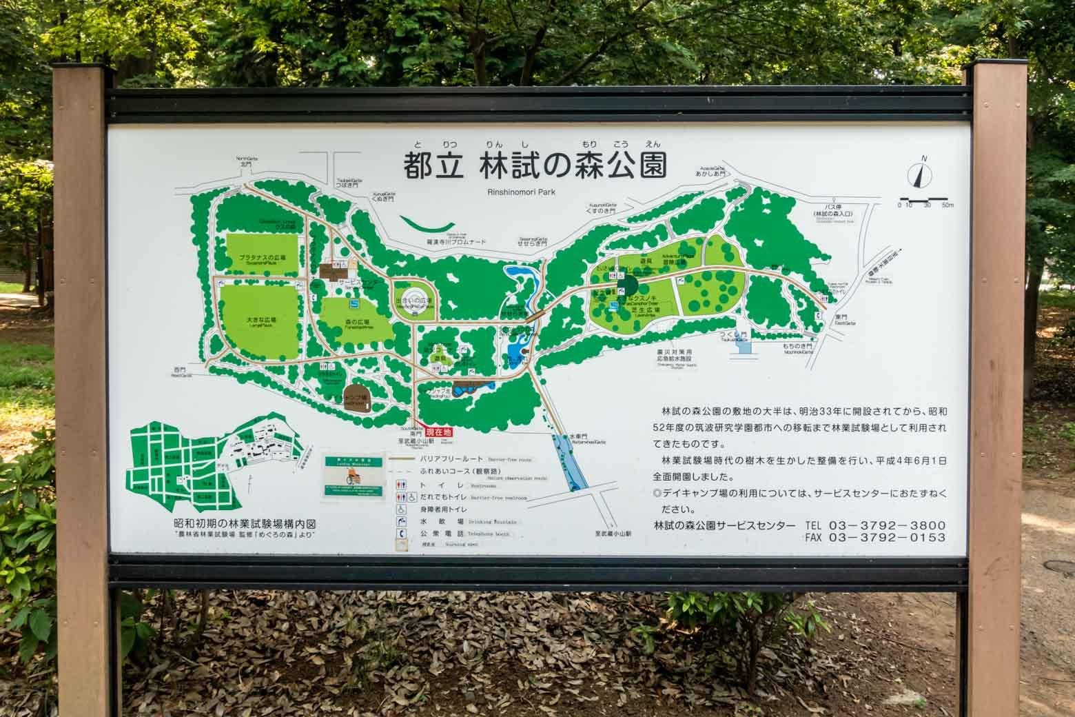 林試の森公園へ到着しました。ここは旧林野庁林業試験場の跡地を利用した公園で、水遊び場や球技の練習ができるグラウンド、デイキャンプ場などなど、さまざまな施設が揃っています。