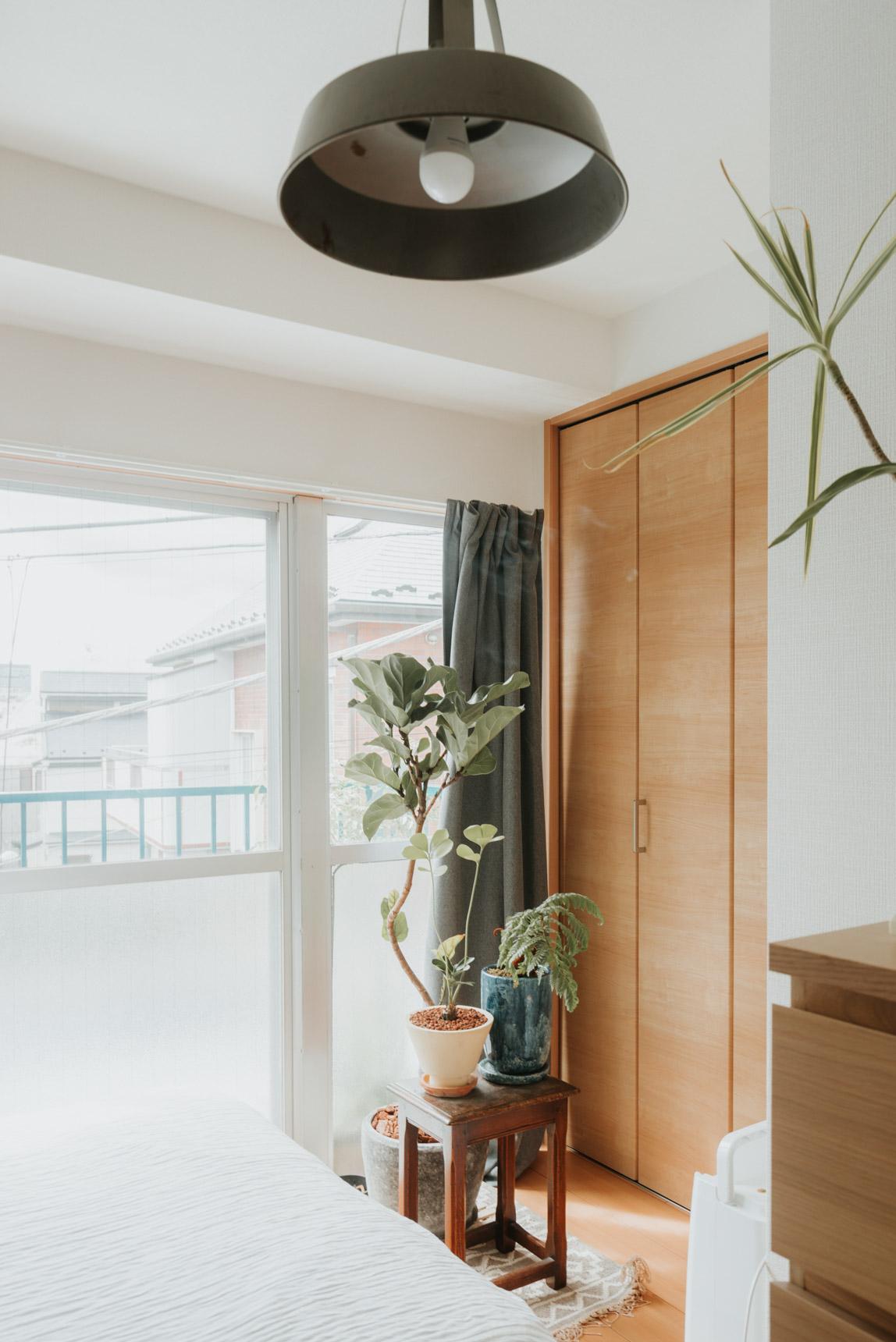 植物がお好きなTetsuさん。窓際の特等席と、ベランダにいくつかの鉢植えが。