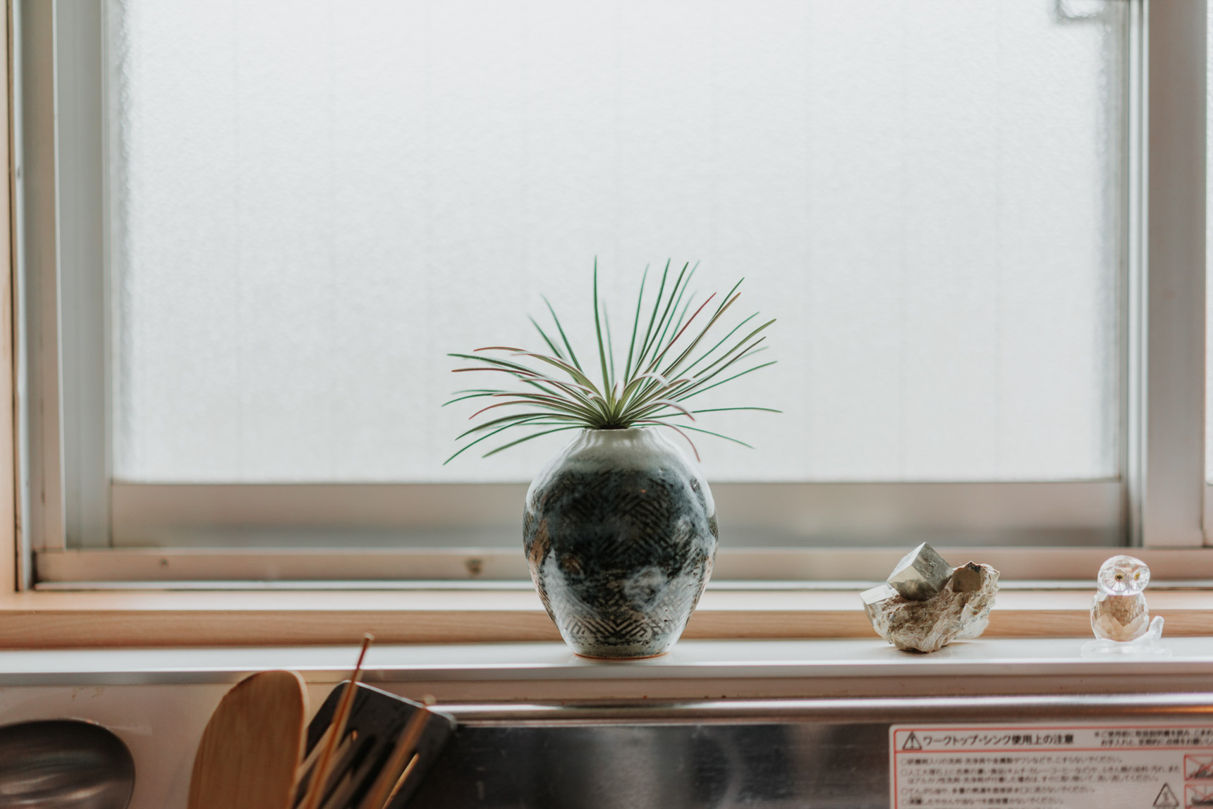 窓際に飾られたグリーンも、鉢とのバランスが絶妙です。