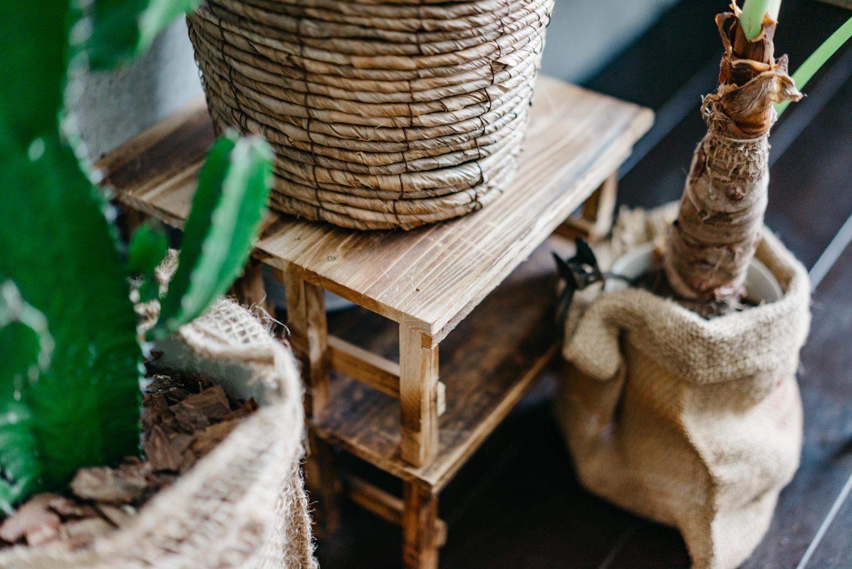 植物を置く木の台は、100円ショップで買ったもの。小さな台を組み合わせているので、いろんな使い方ができます。