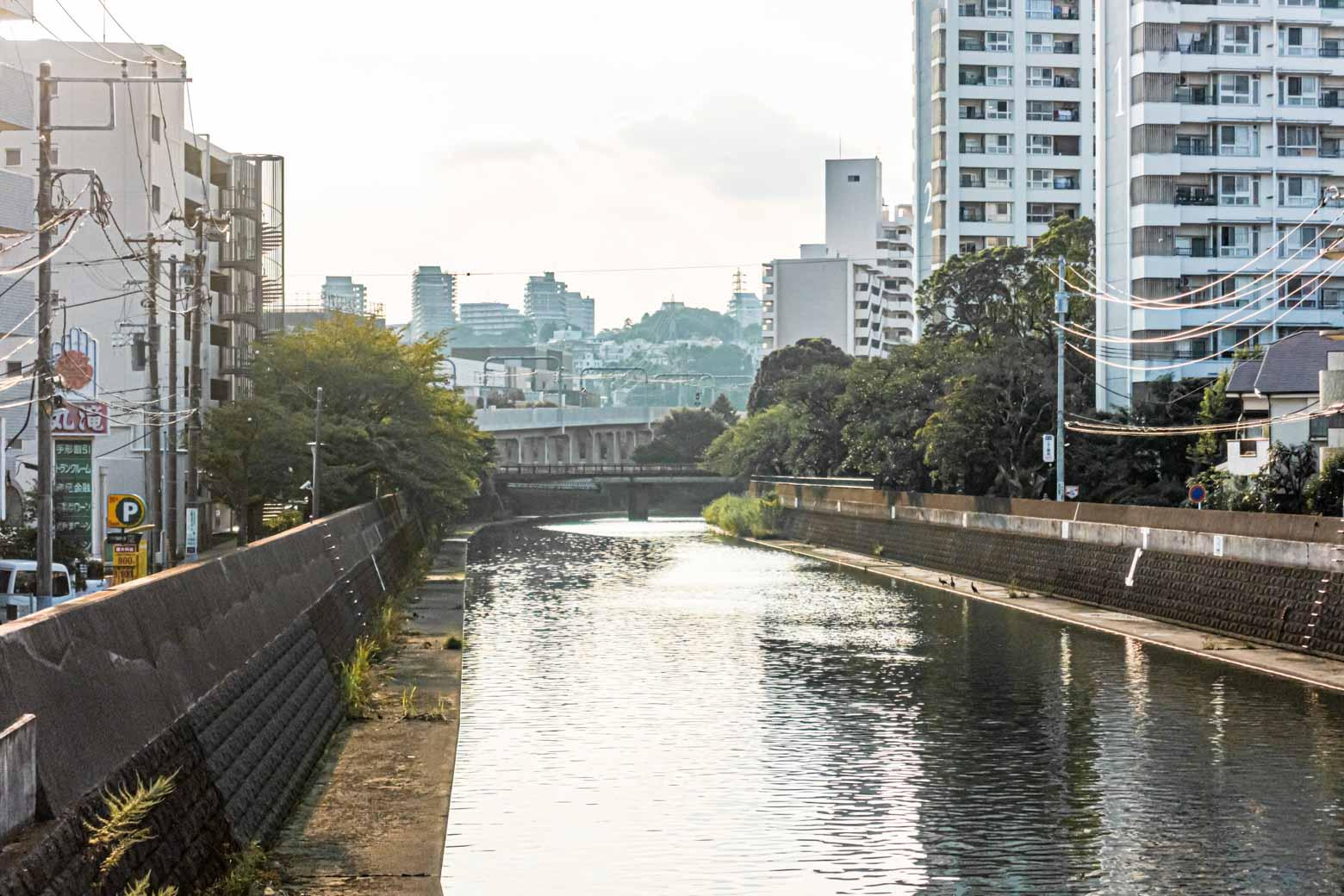 やさしい光が川をそっと撫でます。