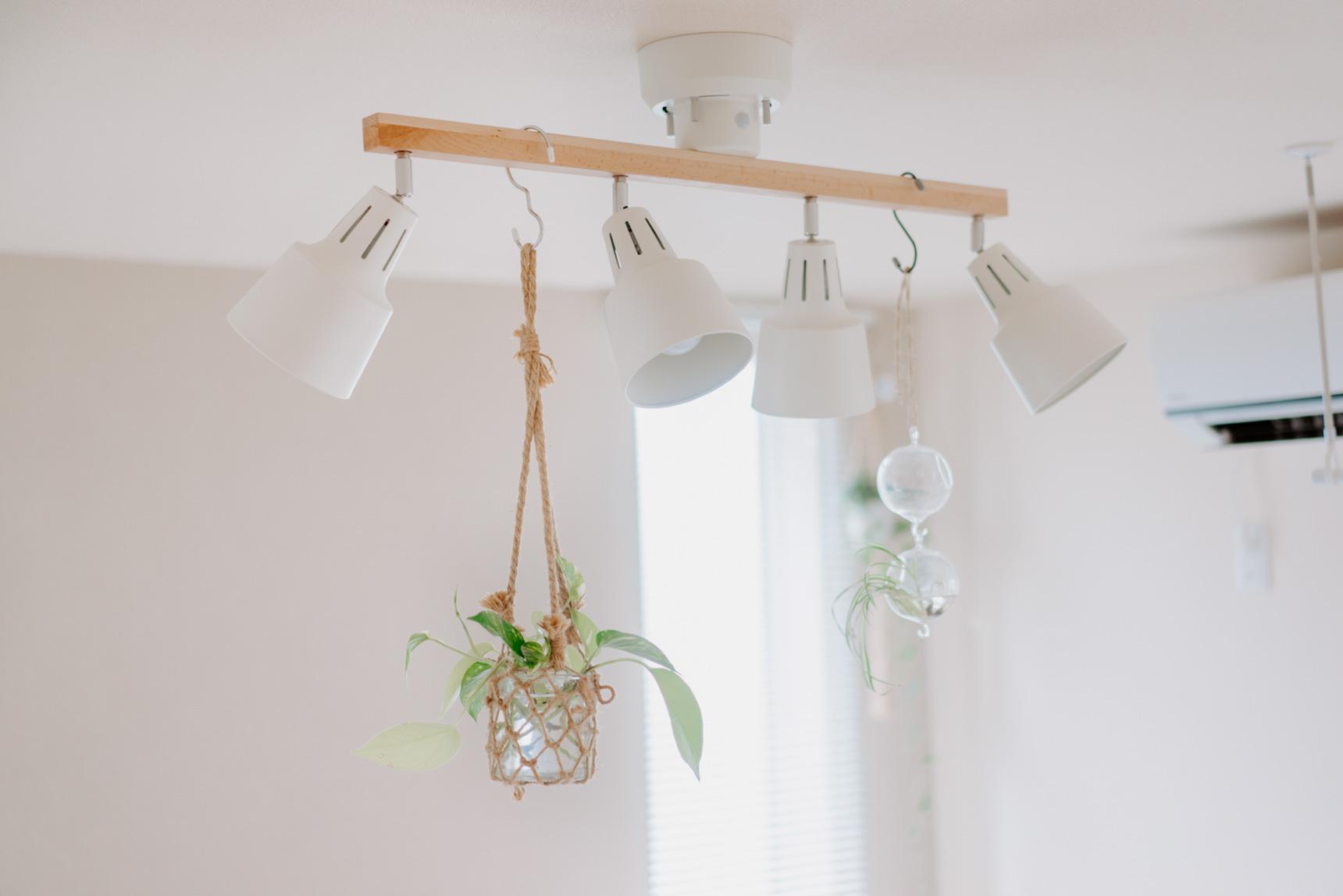 賃貸でも天井から植物を吊るす場所が作れるように、照明はあえて幅のあるスポットライトを選びました。
