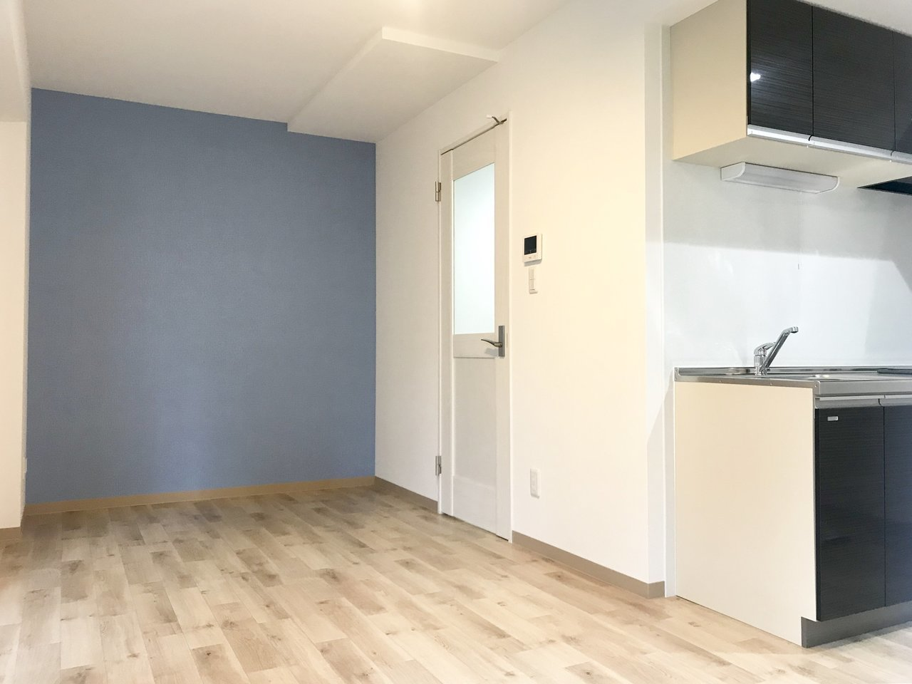 南円山地区の築浅デザイナーズ!男女問わず人気のブルーがアクセントの壁紙がお出迎え。爽やかな印象と開放感がプラスされる、1LDKのお部屋です。木目調の床との相性も抜群です。