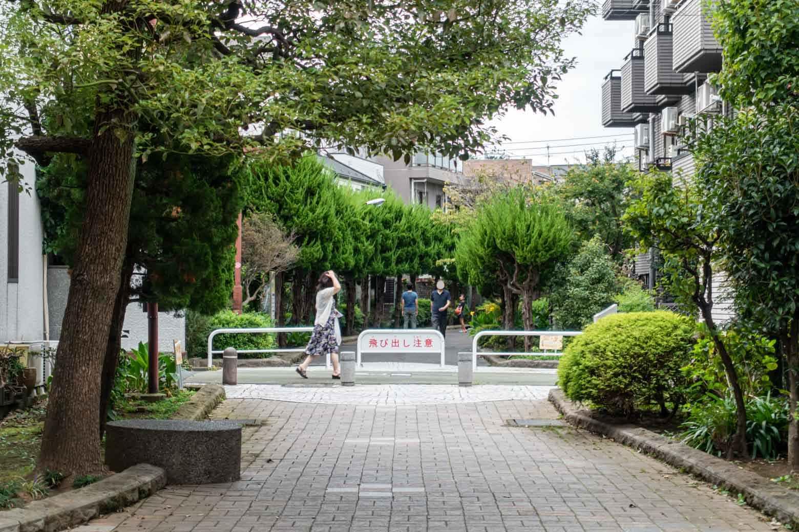 商店街の途中に緑道があります。前から気になっていたのでフラッと散歩してみました。