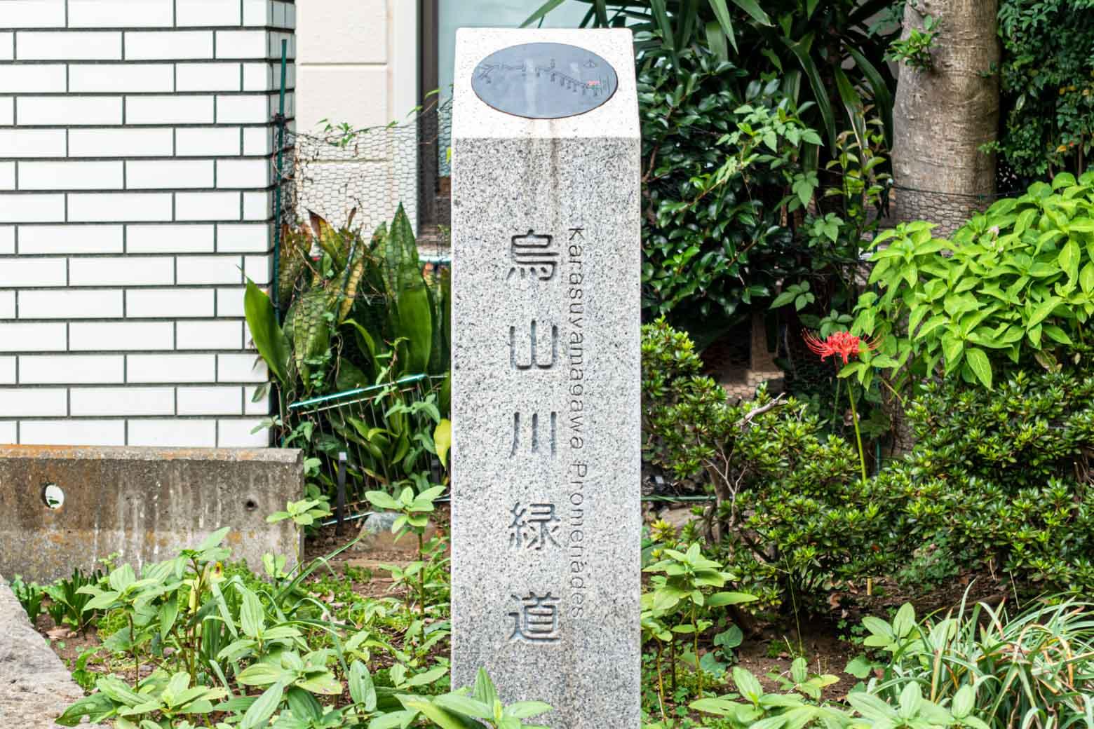〈烏山川緑道〉というそうです。三宿と千歳台を結ぶ約7キロの緑道で、その途中には松陰神社や豪徳寺など由緒ある神社仏閣が点在しています。お休みの日には歴史散歩を楽しむのもよさそうですね。