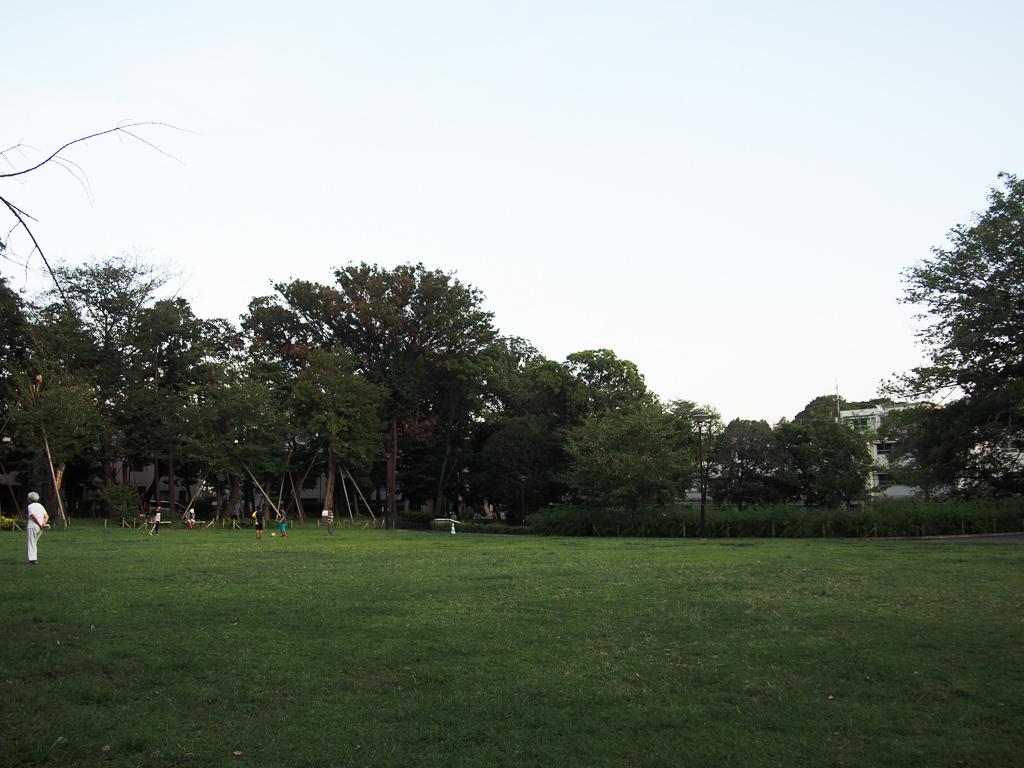 文庫の森公園という場所では、子どもたちが元気に走り回っていました。それから犬の散歩をしている方が多く、驚きました!先ほどの商店街にもペットのグッズを販売するショップが多くあったのも、このあたりの方が犬を飼う方が多くいらっしゃることに由来しているのかもしれません。