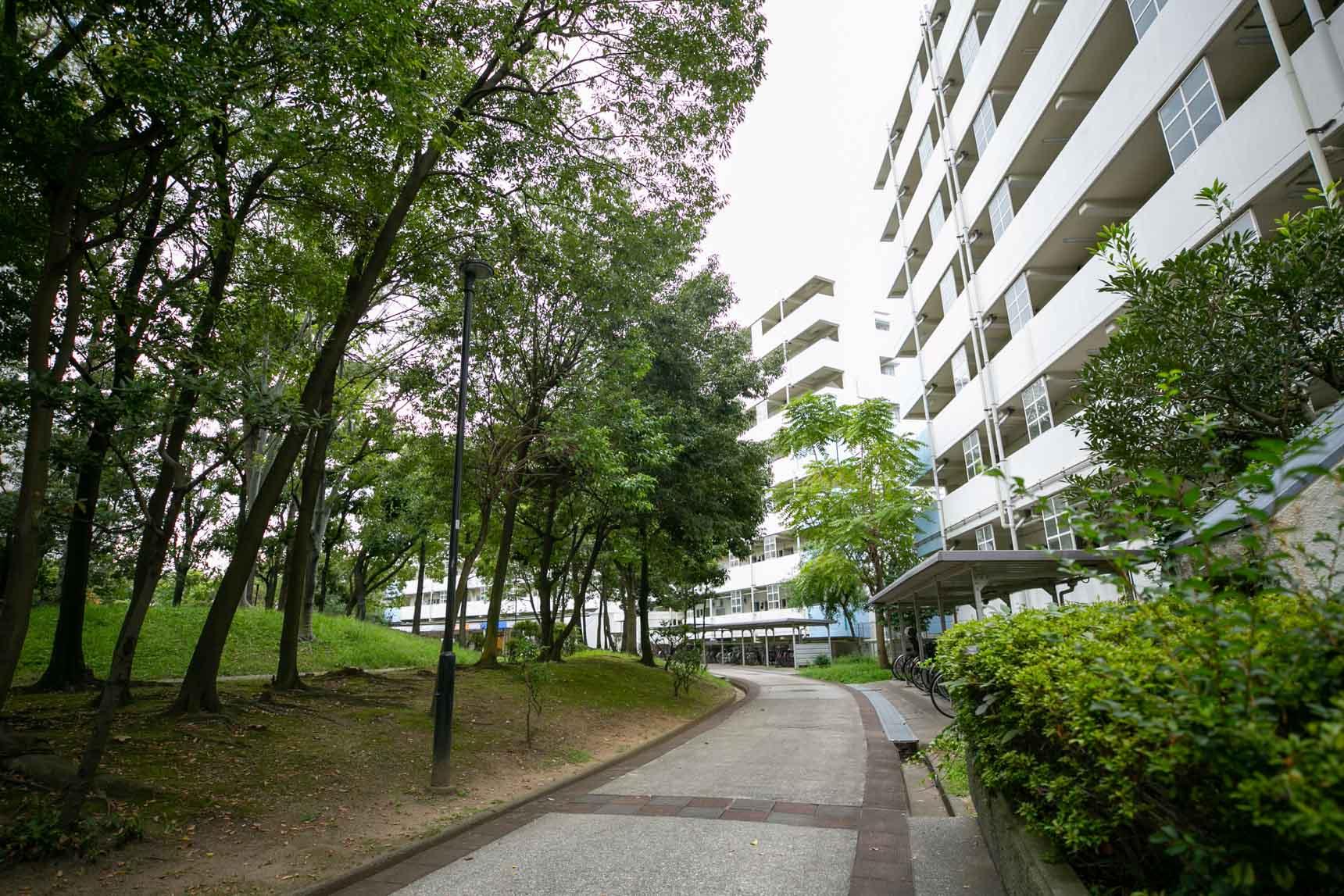 住棟前の街路も広く、緑豊かで気持ち良いですね。