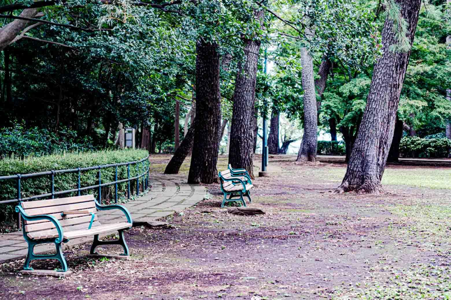 美しい梅林で知られる〈大倉山公園〉があります。ベンチや東屋が設置されていて、地域に住む人々の憩いの場となっています。