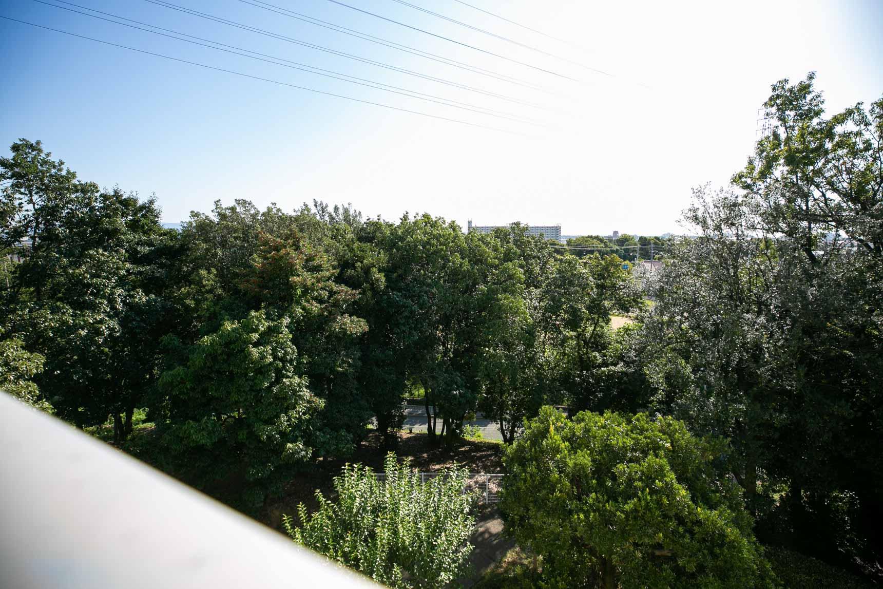 そしてこちらが南側からの眺望です。青空と緑が気持ち良い!