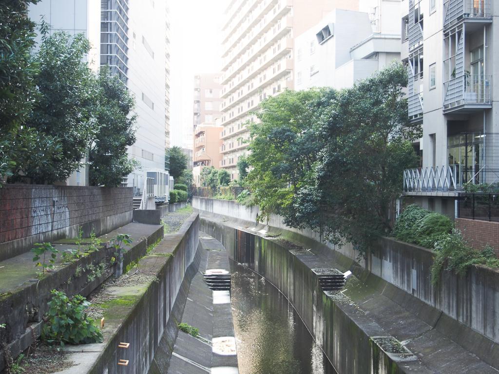 途中で小川も流れています。