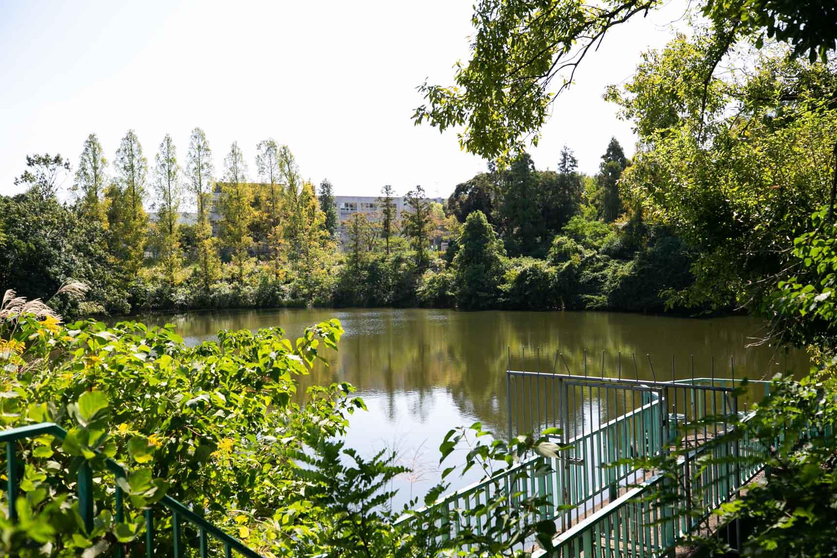 団地の北側には「城山公園」。