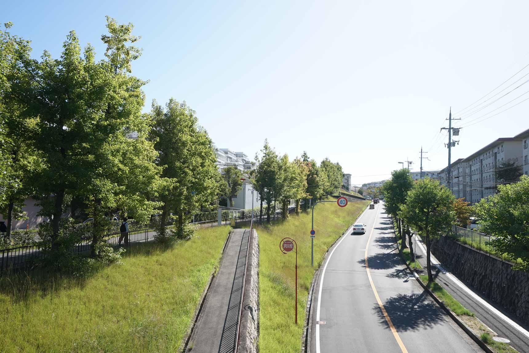 車道から1段高い位置に歩道が設けられているので、とても安心できます。