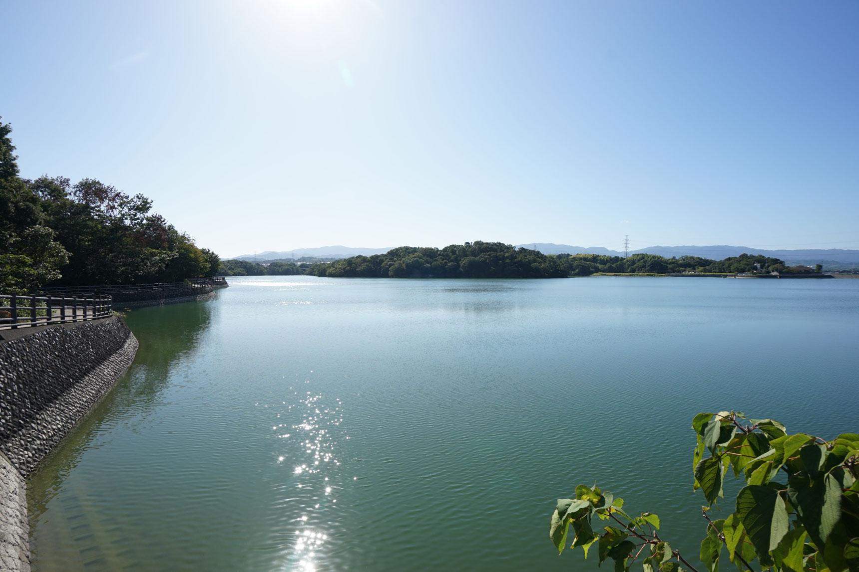 とても大きな光明池…!水辺にも遊歩道が整備されていて、天気の良い日の散策が楽しそうですね