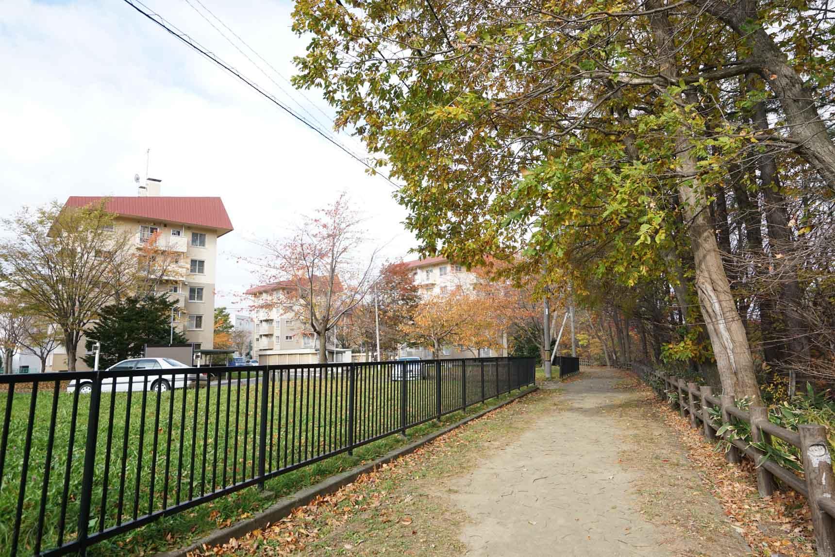 公園の遊歩道。お隣に見えるのは、UR賃貸住宅「大麻中町団地」。自然に囲まれた住環境ですね。落ち着きがあります。