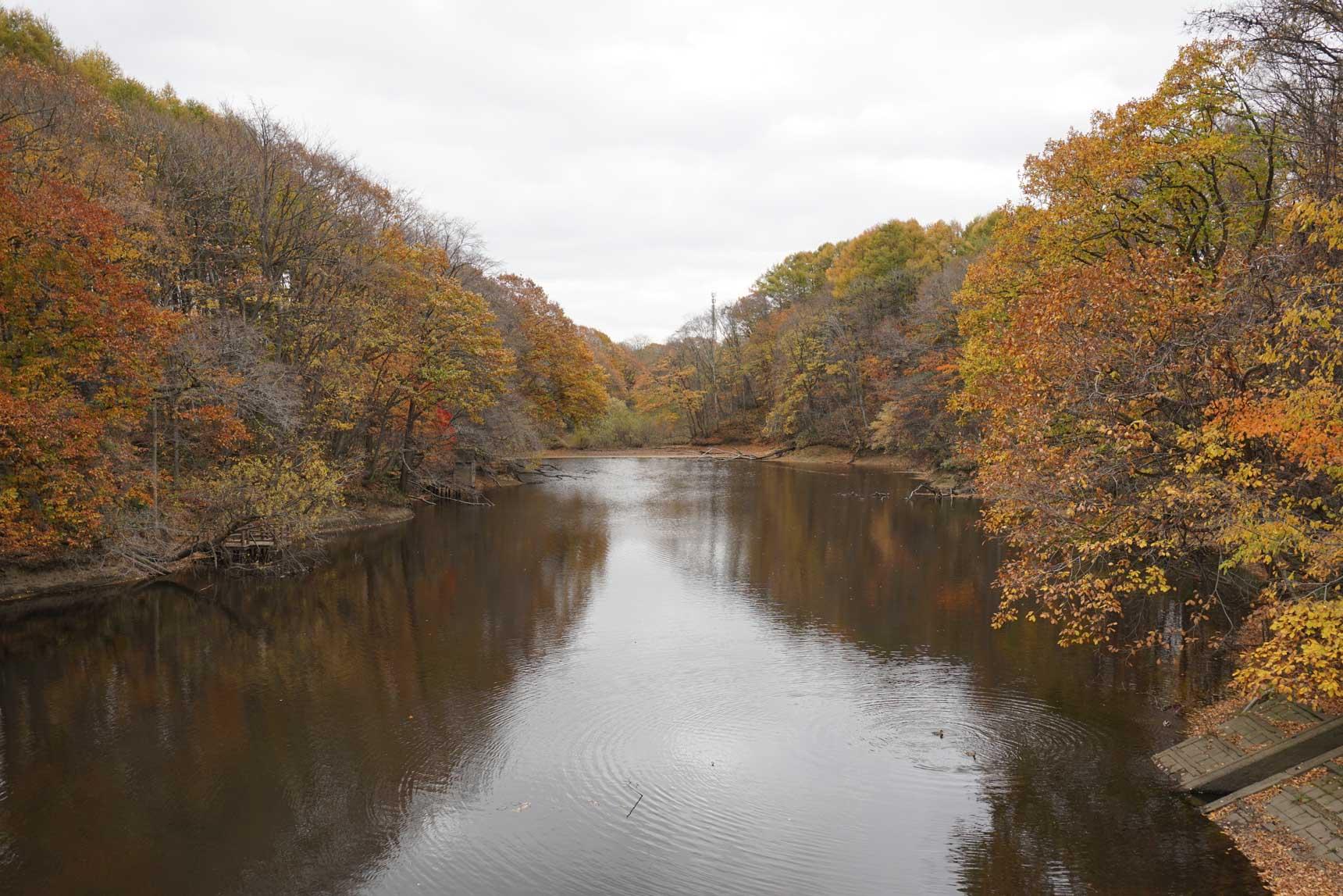 駅の北側すぐにある「大麻中央公園」。ちょうど紅葉の季節で木々が美しく色づき、空気が澄んで美味しく感じられました。