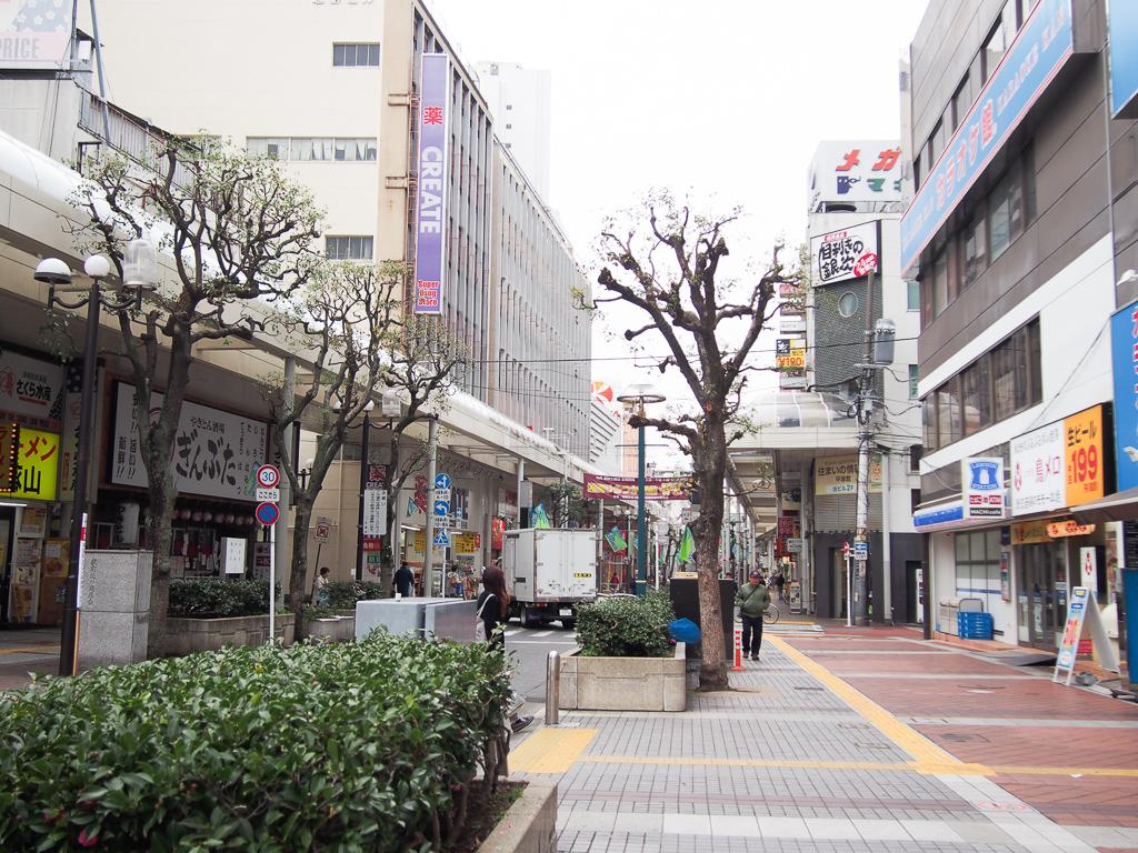 平塚駅前商店街の様子。主にチェーン店の飲食店などが多く入っています。