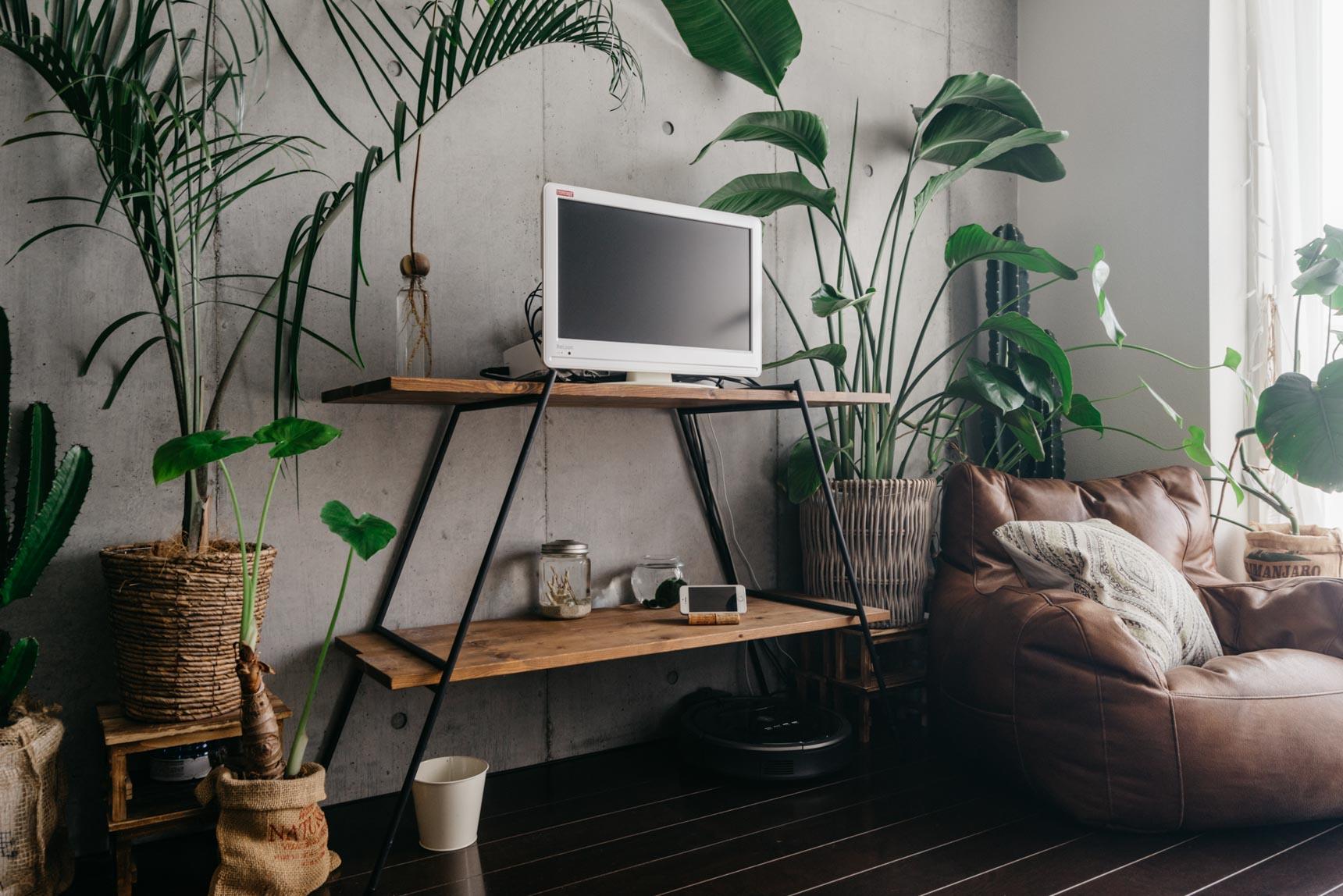 ソファやテレビボードはワックスを効かせたブラウンとアイアンの黒で暗めに合わせています。ダークな雰囲気に、グリーンの緑が映えますね。