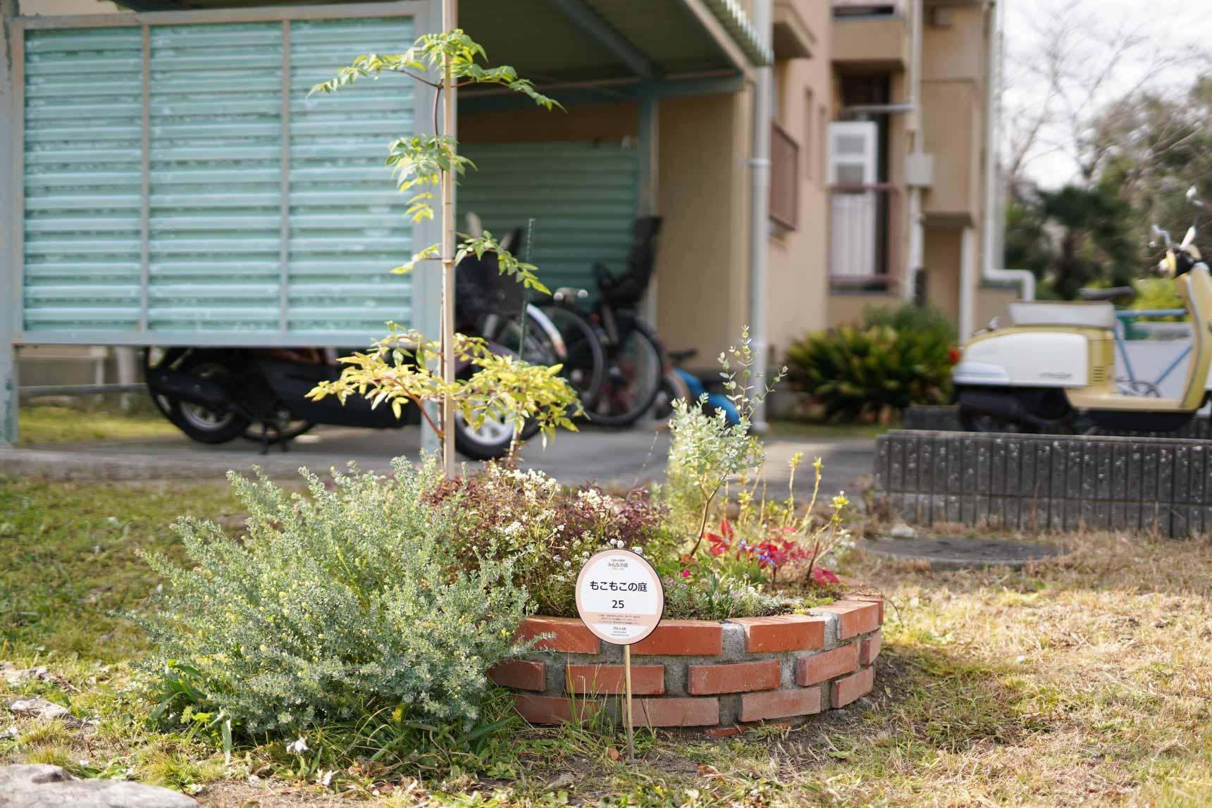 こちらが、敷地内のゆとりあるスペースを利用して、そこかしこに作られている丸い花壇「みんなの庭」