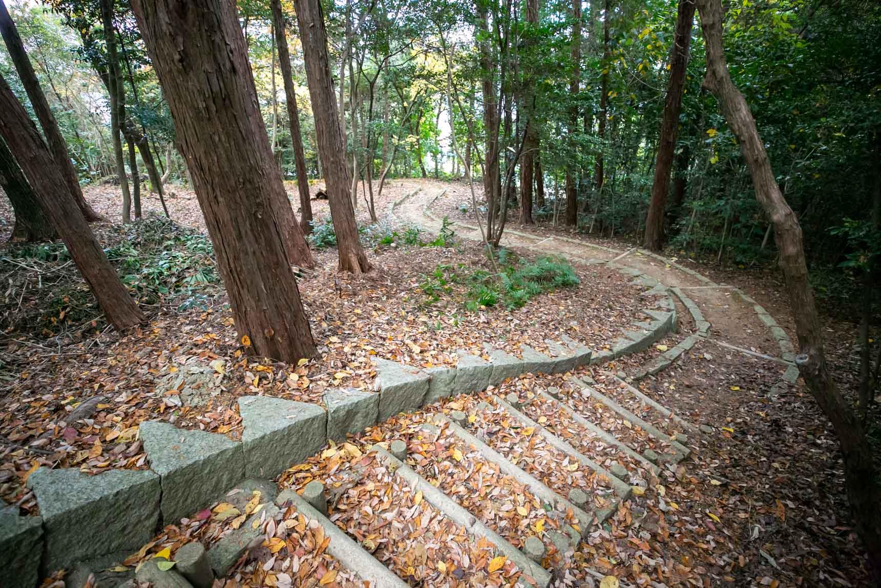 時には、木立の中へ探検に出かけるもよし。自然と身体を動かすのが習慣になりそう。