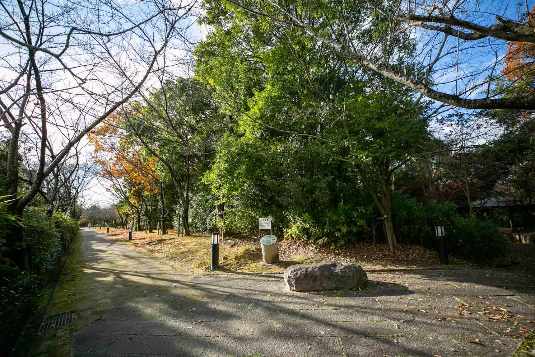 そしてこちらが、団地を囲むように広がっている水晶山緑地。綺麗に整備された遊歩道を散策するもよし