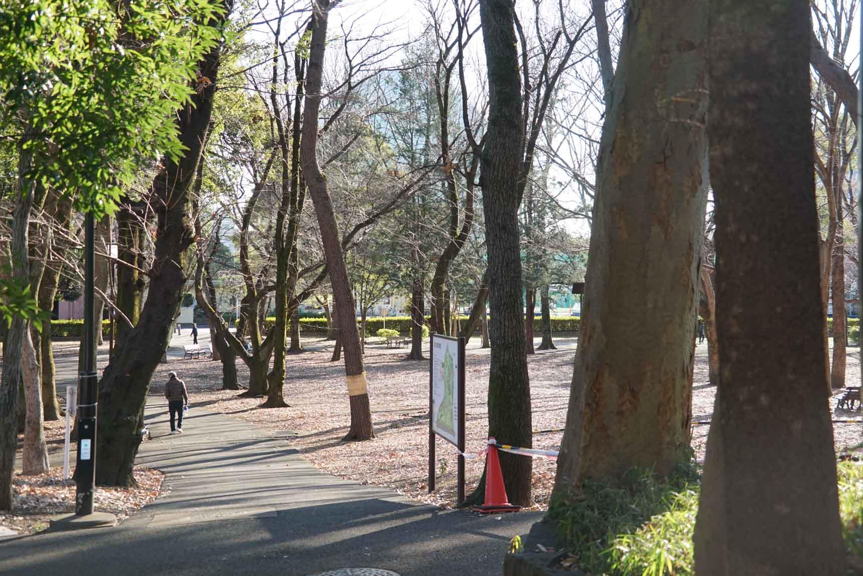 芦花公園駅から南へ15分ほど歩くと、駅名にもなっている「蘆花恒春園(芦花公園)」があります。