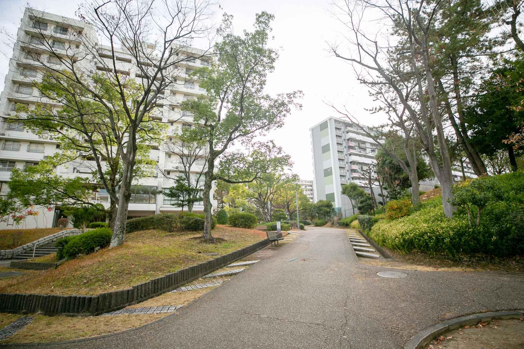 名古屋市内で緑豊かな生活をリラックスして楽しむ。「千代が丘」の自由な暮らし