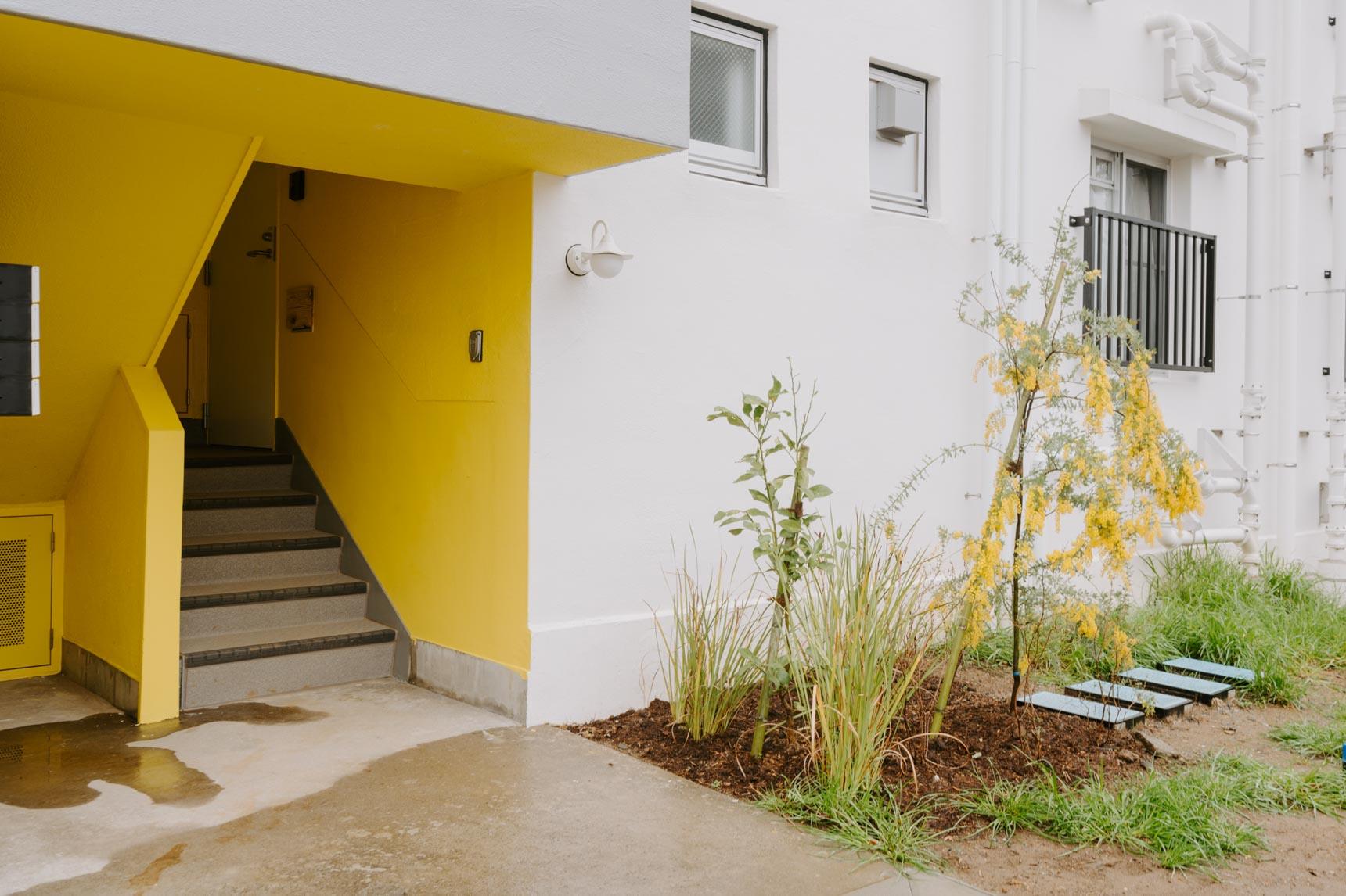 団地ならではの階段室は、自分の部屋がすぐわかるように色分けされています。手前に植えられた植物も色を合わせているこだわり。