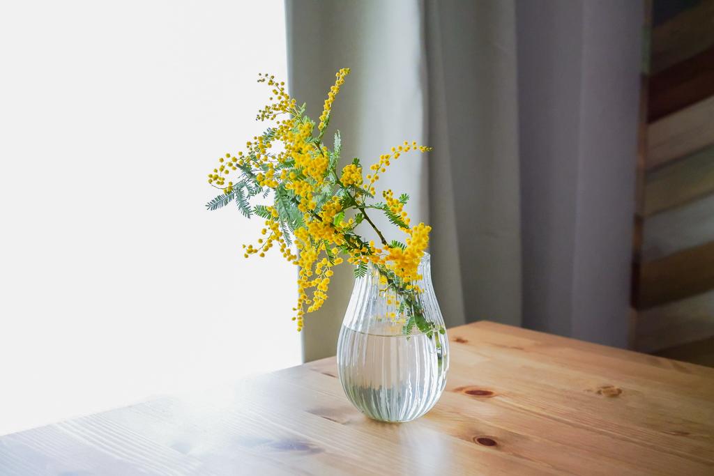春の始まりに、ミモザを買ってきてただ花瓶に入れただけ。それだけで毎日部屋の中で気持ちよく過ごせるようになりました。