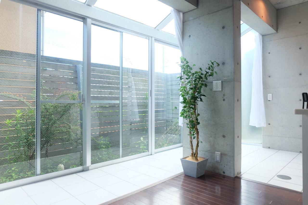明るさの秘密はここ。一面ガラス張りのサンルームから、キラキラとした光が入り込んでいるんです。奥に見える緑は専用庭。お気に入りのハーブなんか育ててもいいですよ。