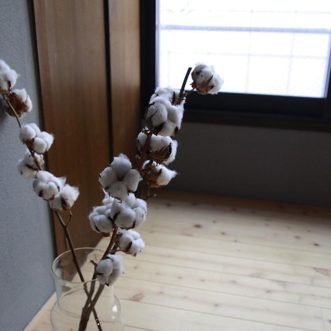 こちらも枝物なので、パンパスグラスのように、高さや重みのあるフラワーベースで飾ってみてください。