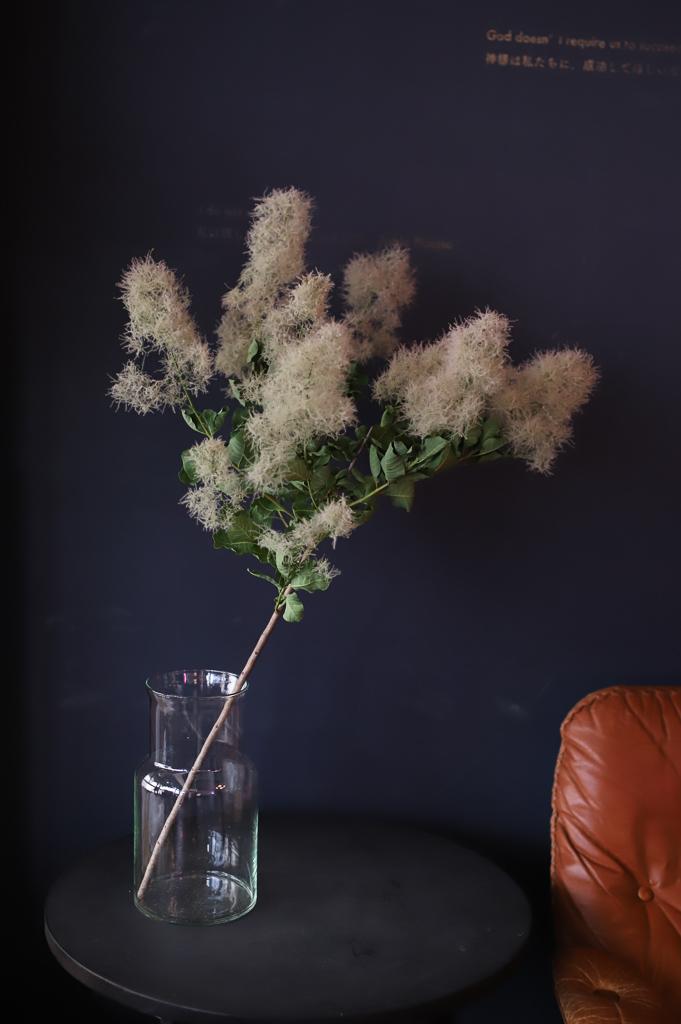 こちらも人気が高く、まさに今の時期が旬のお花です。遠くから見ると煙を上げているように見えるため、この名がついたと言われています。