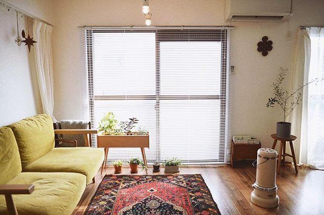 ソファは地元徳島のインテリアショップ「house」(https://www.instagram.com/house_tokushima/)で選んだもの。上の写真に映る三角形のガラストップのテーブルはKEYUCAのもの。