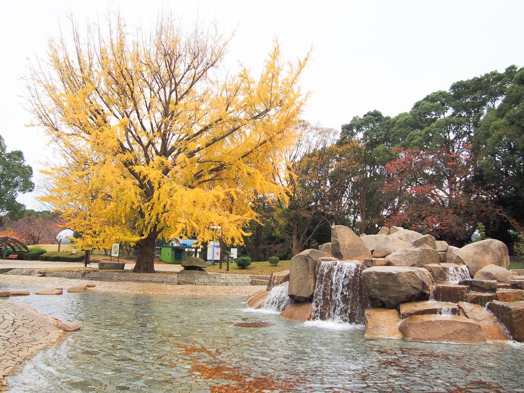 大きな遊具や、動物のふれあい広場などもある、平塚市総合公園。