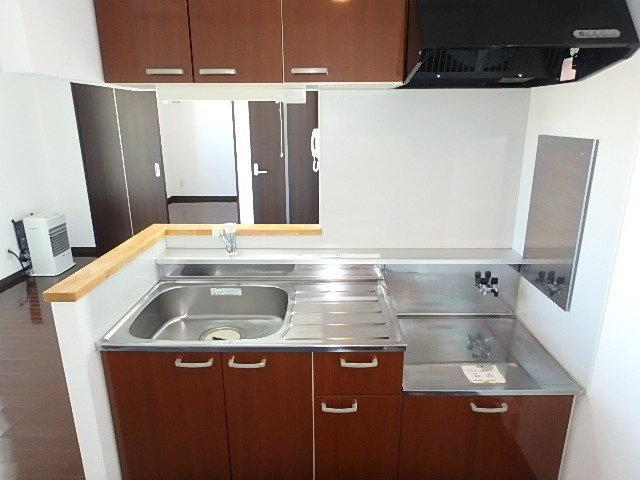 キッチンはカウンタータイプで広々としています。ガスコンロは持ち込みですが、お好きなタイプのデザインのものが選べていいですね。