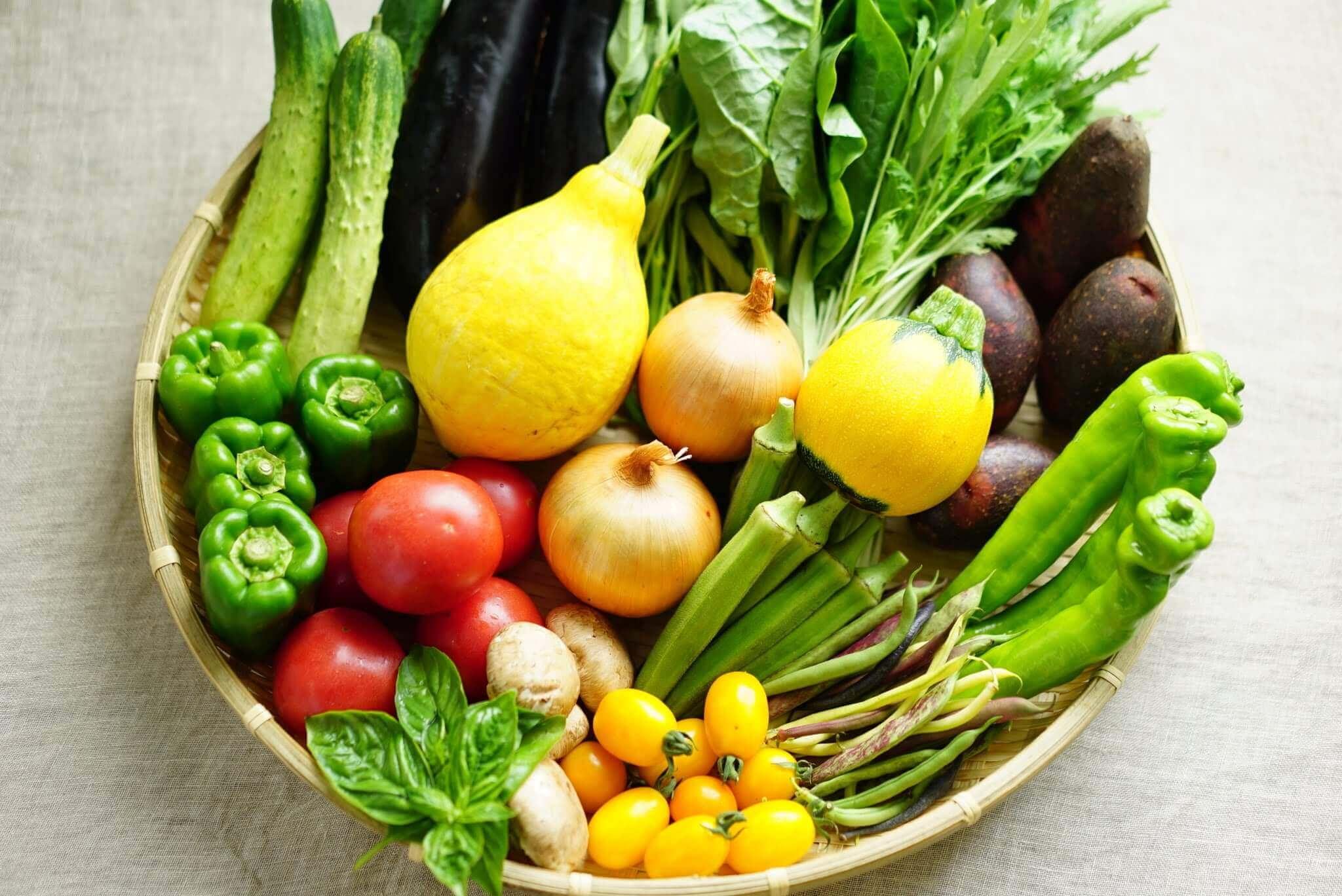 「もったいない」をなくす!野菜を長持ちさせる方法は?夏野菜の保存の仕方まとめました