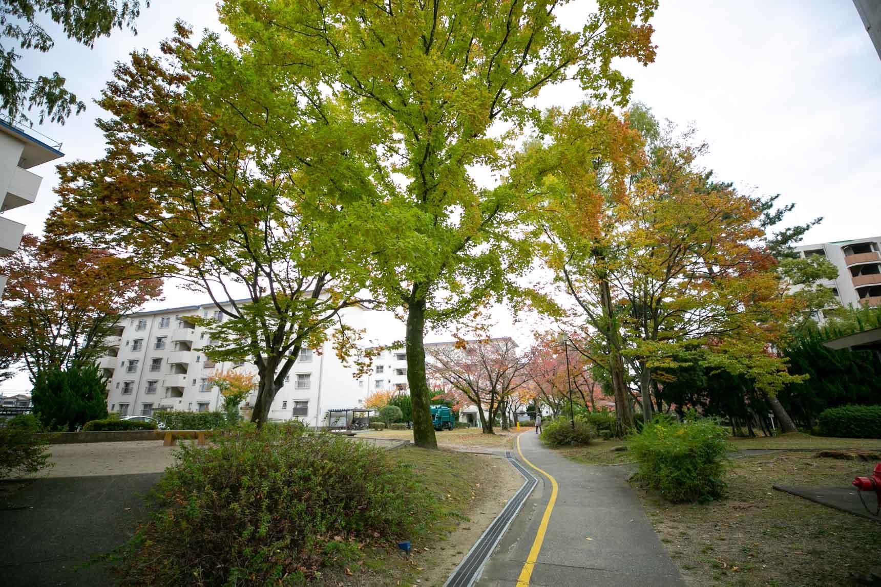 例えば、1周約2kmのウォーキングコースが敷地内に整備されている「富田」。緑の中を歩きながら息抜きができるって、いいですよね(この団地の紹介はこちらhttps://www.goodrooms.jp/journal/?p=38604)