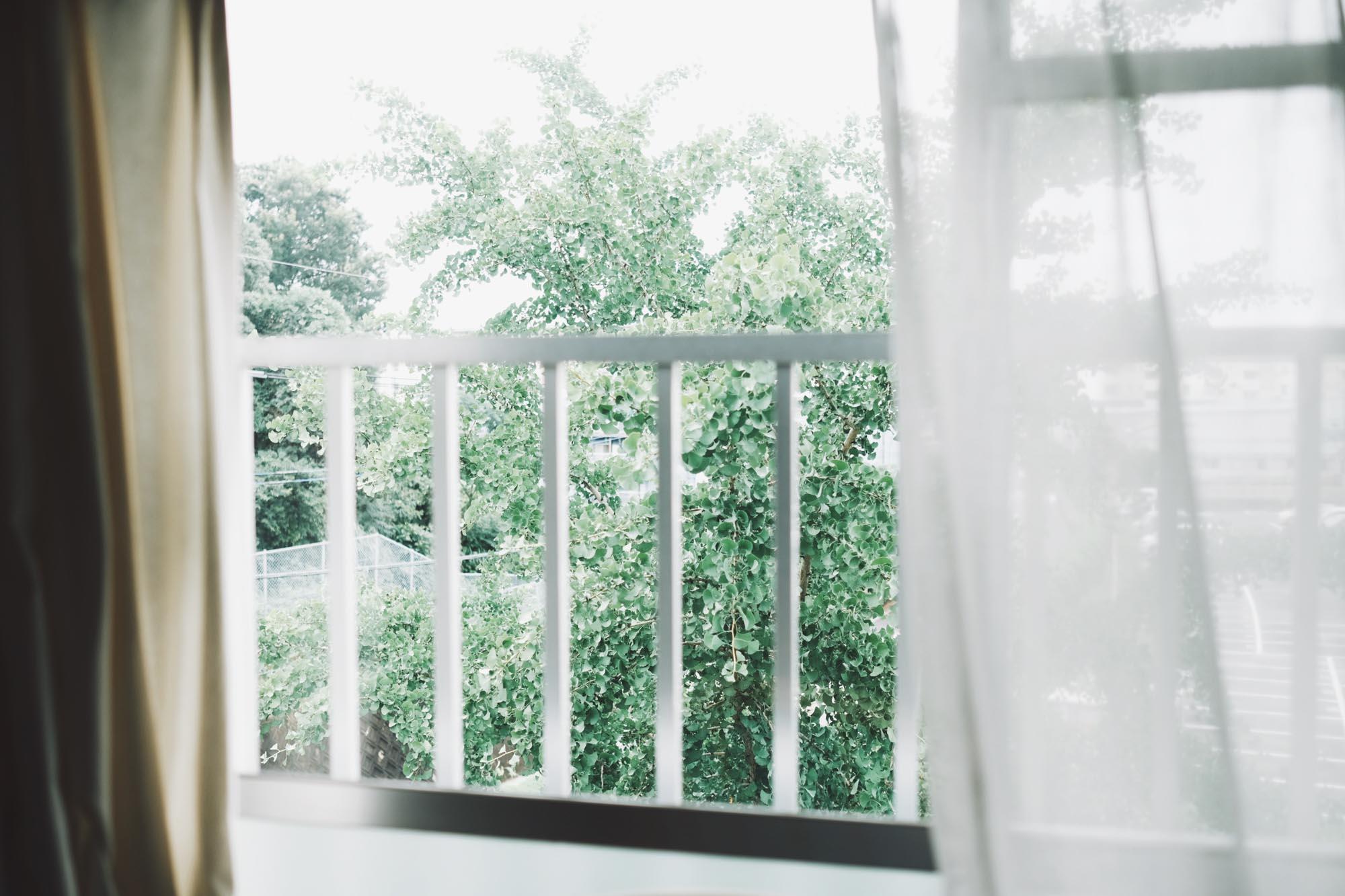 見に行ってみると、団地ならではの「光と風の入り方」が特に気に入ったそう。お部屋の目の前には銀杏の木があって、一年を通して季節を感じられます。