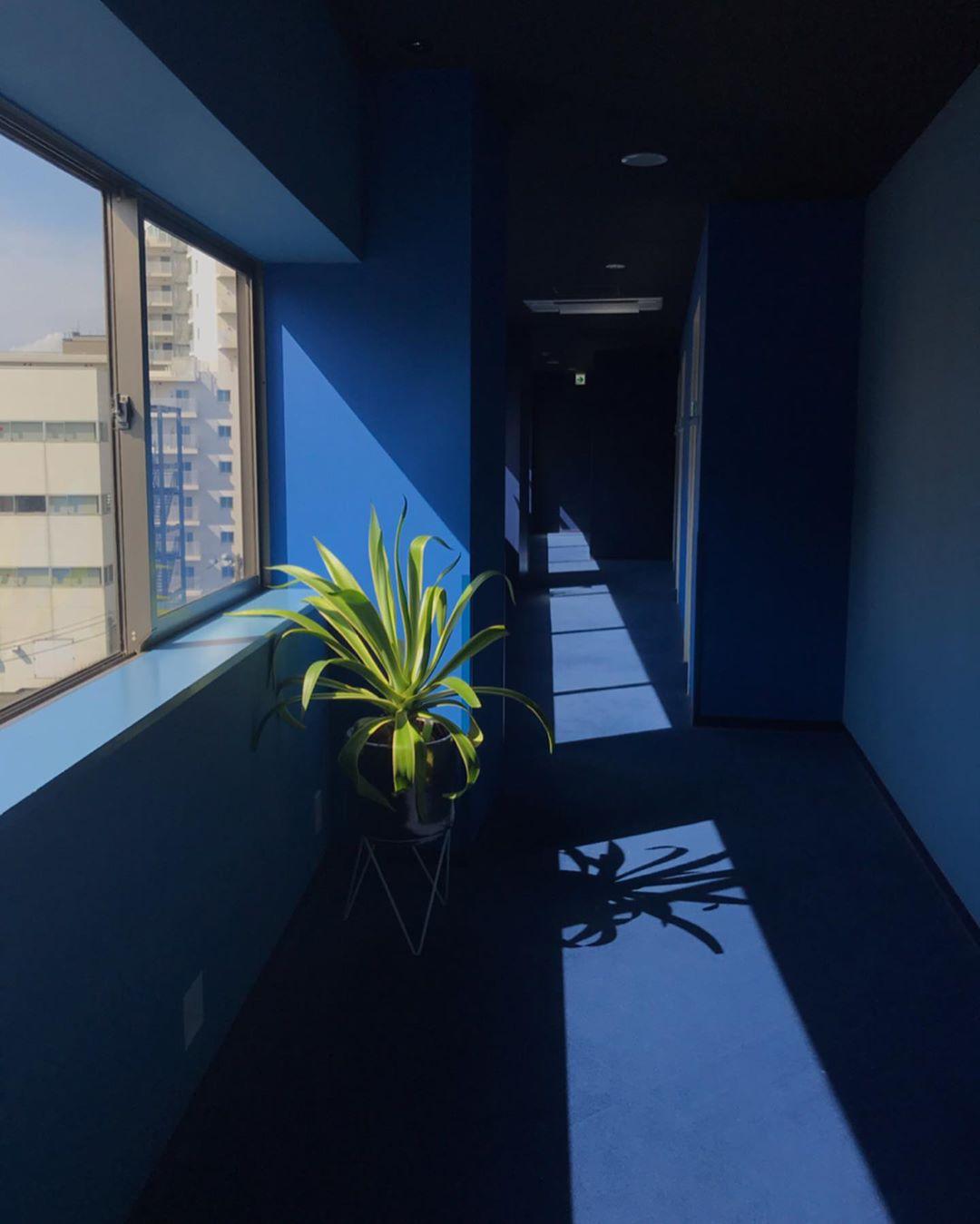 廊下の壁紙まで、ブルー一色。
