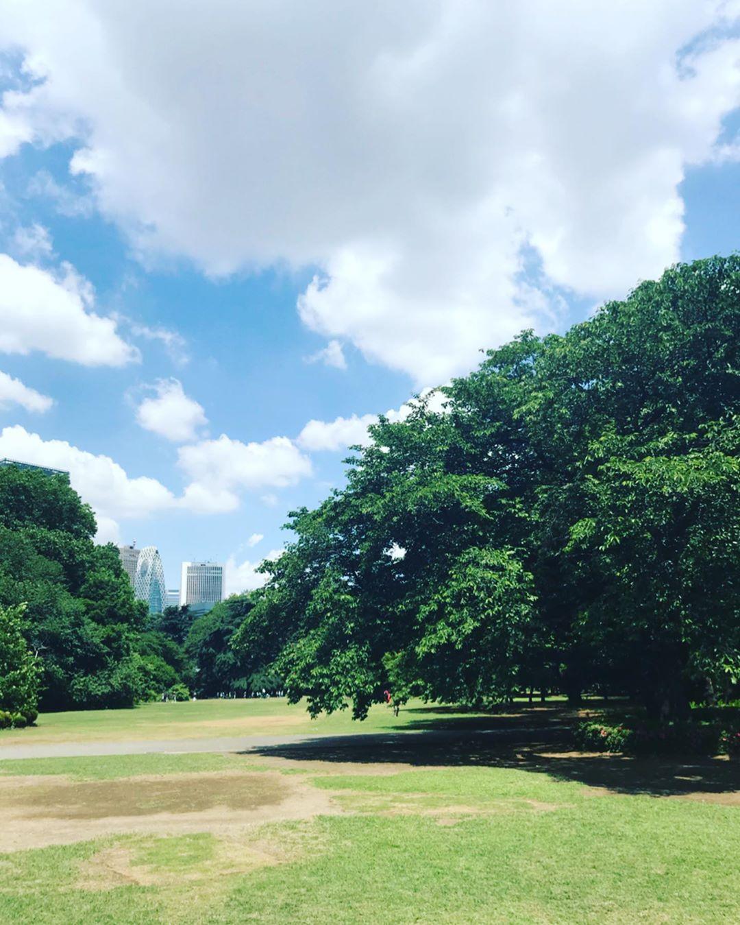 カフェラテを片手に、新宿御苑公園の芝生で寝転んだり。