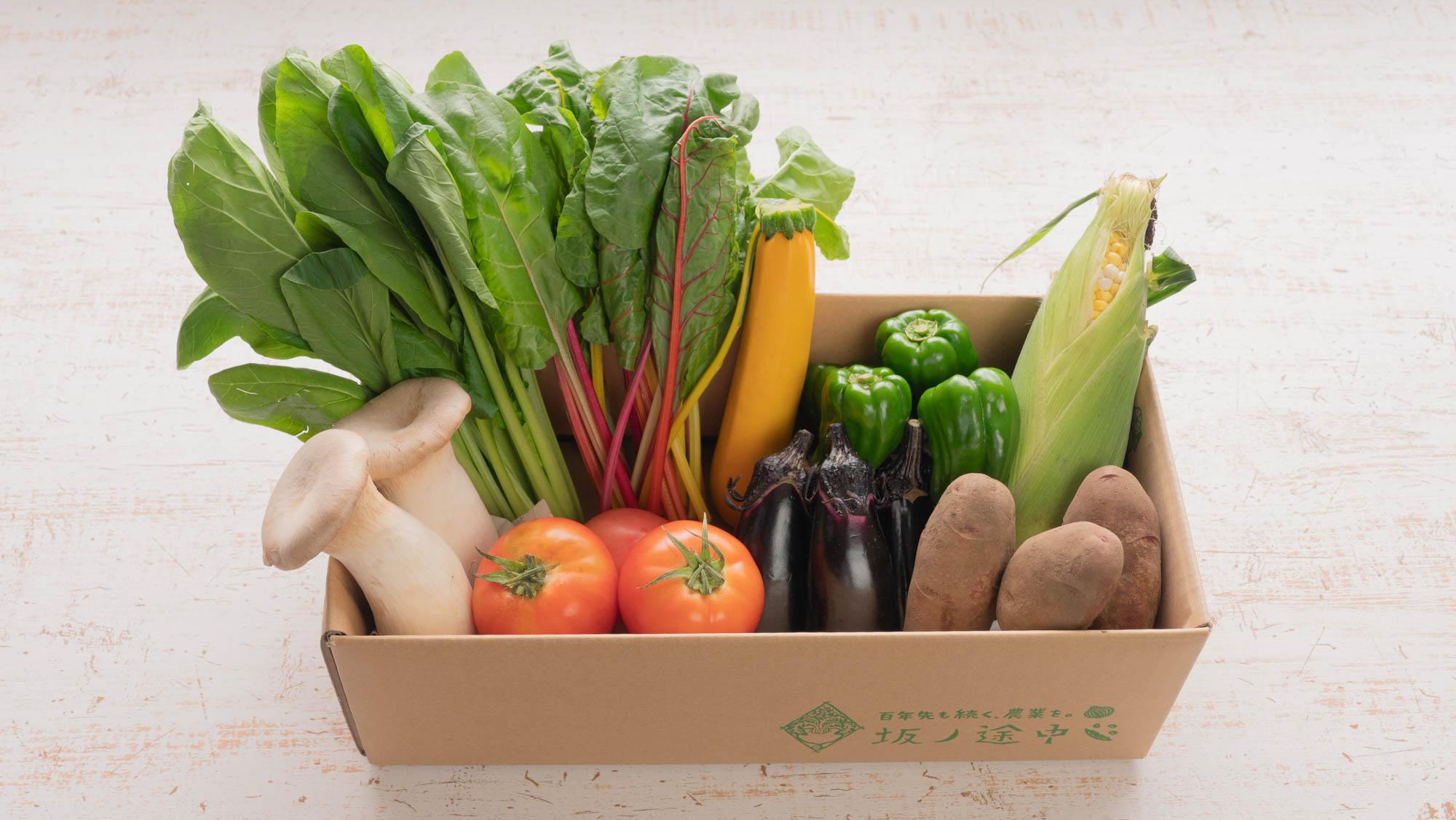 今回はどんな野菜が入っているかな?と開けるのが楽しみになる定期宅配。