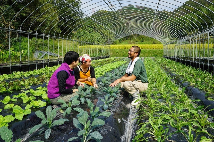 農家さんとの手間のかかる細かなやりとりも、工夫をしながらずっと続けています。
