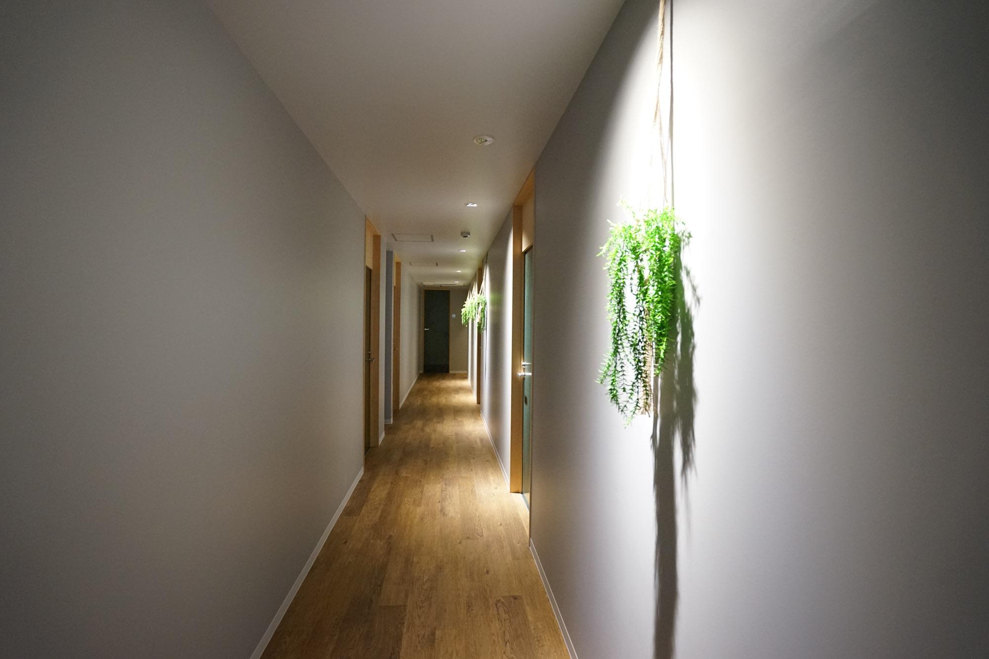 廊下も清潔でおしゃれな雰囲気です。