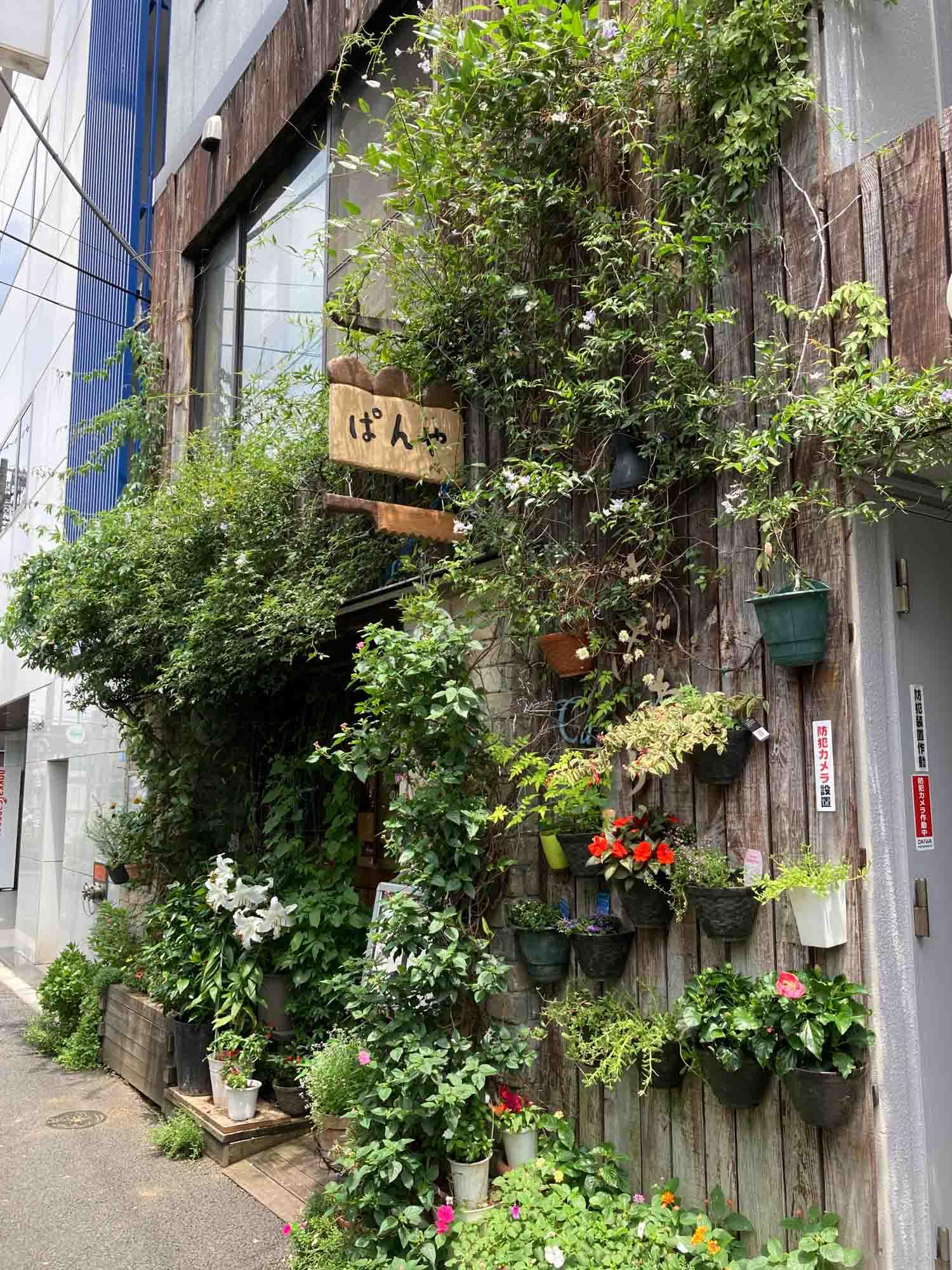 そしておすすめはこちら。モサモサと緑が生い茂る外観が可愛いパン屋さん「カフェむぎわらい」