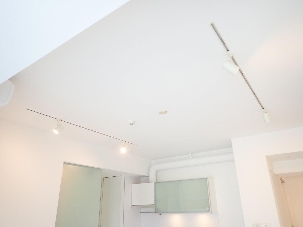 リビングの天井にはライティングレールがありました。
