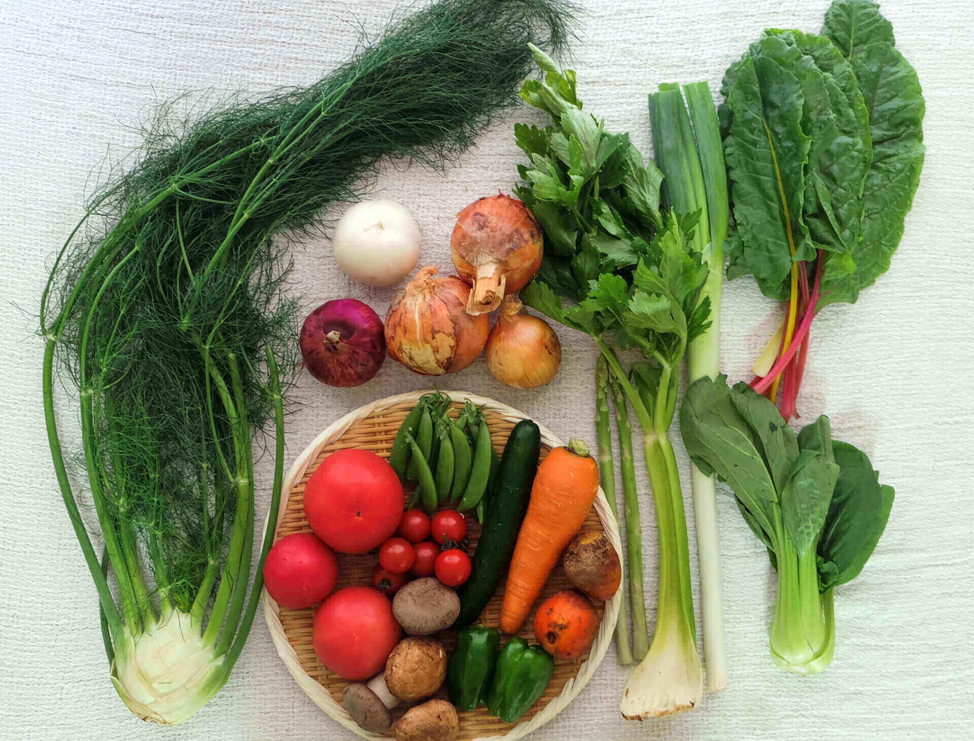 野菜をたくさん摂りたい人のための、一人暮らしの献立1週間