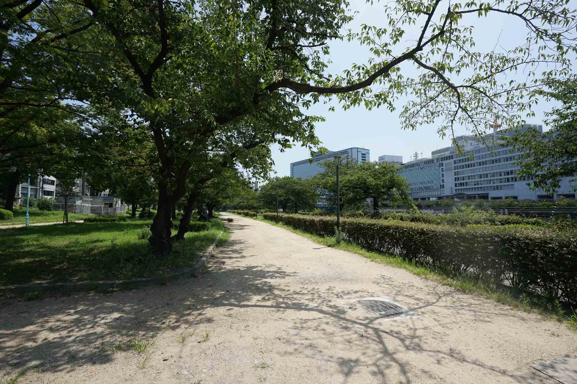 ホテル目の前の「南天満公園」はランニングのメッカとしても知られています。川沿いをずっと進むと、お花見の名所、桜ノ宮方面にたどり着きますよ。