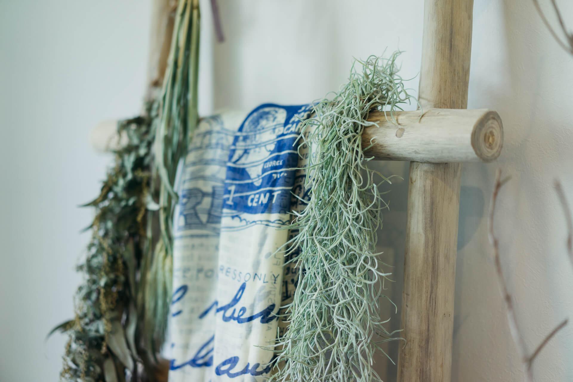 ラダーラックにかけて飾るなど。個性的な植物を、あまり場所を気にせず育てられるのも、エアプランツの魅力です。(このお部屋をもっと見る)